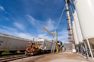 Oil & Gas Services – Panther Industries Inc